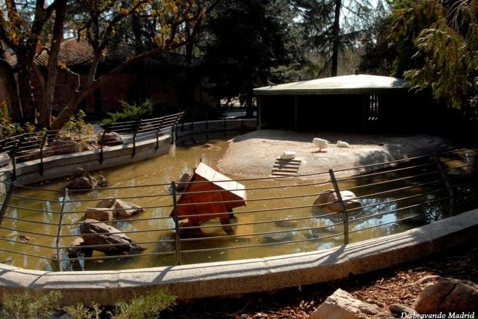 parque retiro madrid jardim curiosidades casa feras fieras zoologico